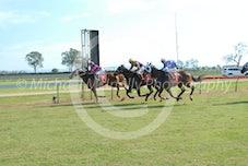 Race 4 Gambit