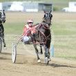 Race 3 Royal Taz
