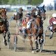 Race 6 Sir Semper Fidelis