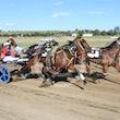 Race 7 Lurah