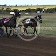 Race 8 Jax Navaro