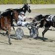 Race 8 Ruthless Armbro