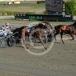 Race 9 Mr. Meddle
