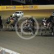 Race 8 Lilac Flash