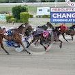 Race 1 Speedie Mcardle