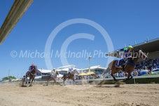 Race 2 Royal Equanio