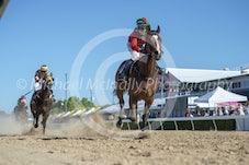 Race 5 Prince Of Flinders