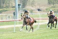 Race 1 The Bumblebee
