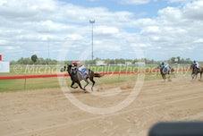 Race 2 Goresbridge
