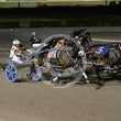 Race 6 Idle Hands