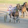 Race 1 Lynnsanity