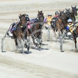 Race 6 Willsintown