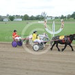 Mini Trotters Race 2 Phantom Fella