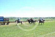 Race 3 Splitz