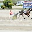 Race 2 Sheza Galvinator