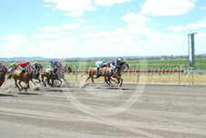 Race 1 Lushness