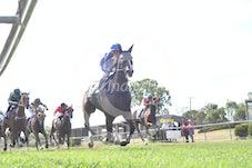 Race 2 Daisy's Apart