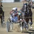 Race 2 Newmerella Molly