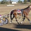 Race 8 Riverleigh Jeff