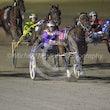 Race 5 Newmerella Ladykay