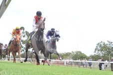 Race 2 Biancatak