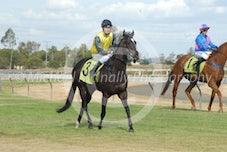 Race 5 Avasa
