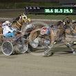 Race 5 Sonny Orlando