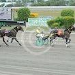 Race 4 Ace Montana