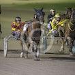 Race 7 Sir Semper Fidelis