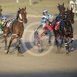 Race 2 Celtic Cruza