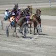 Race 3 Maywyn Tough
