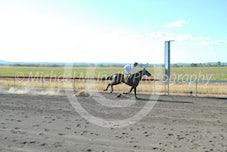 Race 4 Daisy Pearl