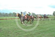 Race 4 Brat Attack