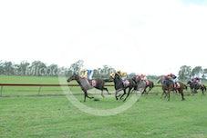 Race 1 Riverina Gold