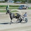 Race 4 Studleigh Sonny