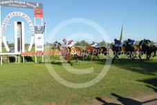 Race 5 By the Law