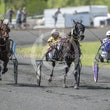 Race 1 Bambole Nere