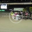 Race 5 Matron Jujon