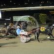 Race 8 Doolittle Dandy