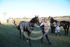 Arabian Race 1 Zalina