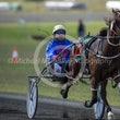 Race 2 Cavalryman