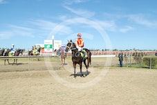 Race 1 Li'l Rodge