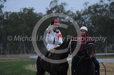 Race 4 Arigold