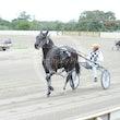 Race 1 Mister Cole