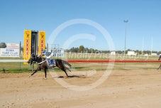Race 4 Arnwood