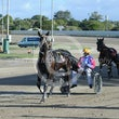 Race 4 Nicopolis