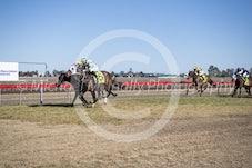 Race 4 Tabard