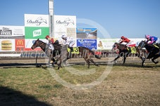 Race 6 Glenbawns Dutchess