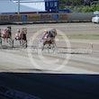 Race 3 Sir Jujon