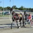 Race 4 Elmaur Joy